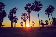 venice-beach_img_1125